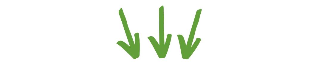 Pfeile grün 3